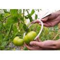 Fruit caliper 2 to 22cm
