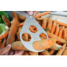 Kalibriergerät für Trauben/ Gemüse 10 bis 32 mm