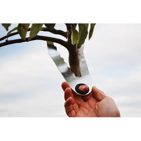 Calibreur mesure tronc de 6 à 18cm