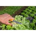 Couteau de récolte de salade 11cm