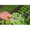 Salad harvest knife 11cm