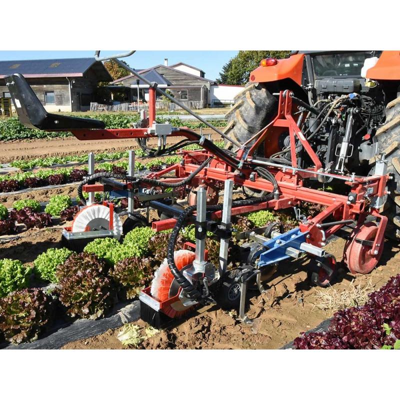 Brush hoeing machine for plastic mulch