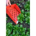 Pelle de récolte pour mache / salade